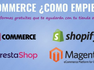 E commerce, 4 Plataformas personalizables.